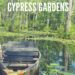 Cypress Gardens South Carolina mit dem Kanu entdecken